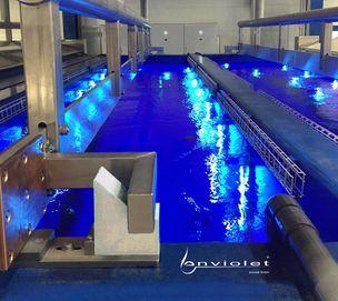 UV-disinfection of TSAA rinse tanks