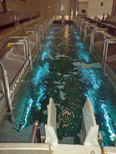 Élimination permanente des germes dans les éviers ouverts