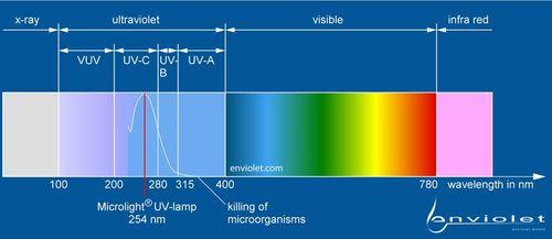 L'UV-spectre et le courbe l'inactivation du DNA